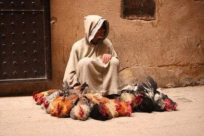 モロッコ フェズ 旧市街の街並み