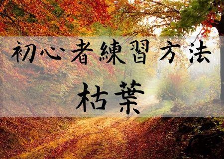 初心者練習方法 枯葉 autumn leaves